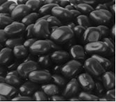 Black Bean pebbles 1-2 inch